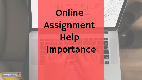 Online-Assignment-Help-Importance