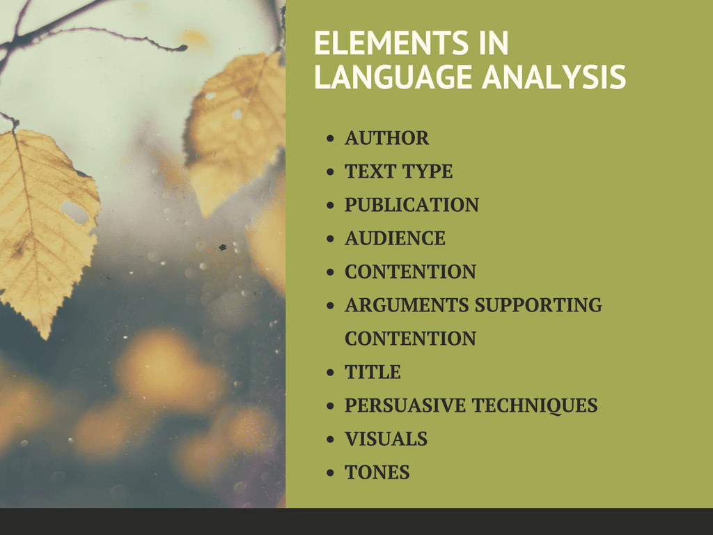 language-analysis-7