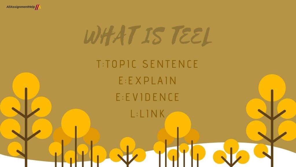 what-is-teel