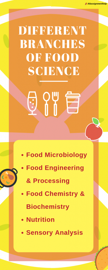 different banches of food science