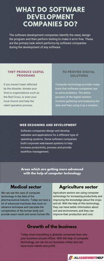 Computer technology: What do Software Development Companies do