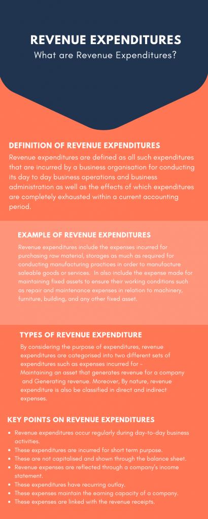 What is Revenue Expenditure?