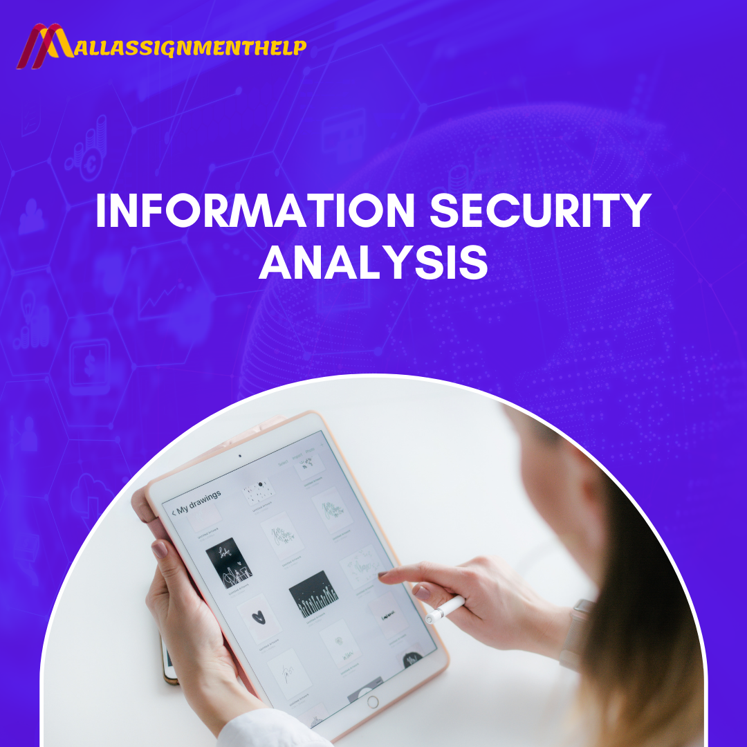 Information Security Analysis